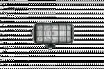 Ködlámpa Ráccsal - Téglalap H3 (Pár) WES0038